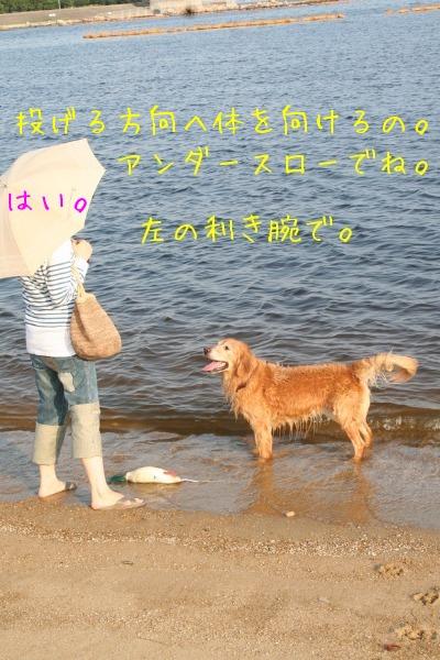 d0224487_0151541.jpg