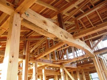 【木の家づくり】 構造見学会のお知らせ_f0227395_1117433.jpg