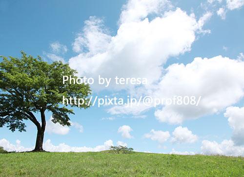 f0165721_21583328.jpg