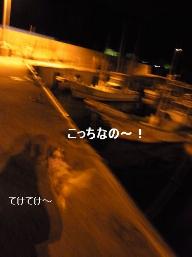 f0214121_23103846.jpg
