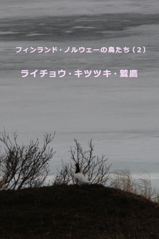 b0144049_14531880.jpg