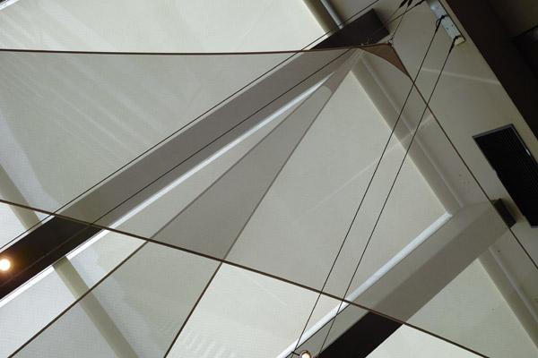 2012/09/07 続続続:DP2 Merrill  パパイヤの発芽_b0171364_104357.jpg