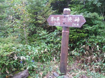 初秋の風景_a0057828_20231475.jpg