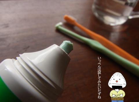 ちょっといい歯磨き粉_d0156336_1623661.jpg