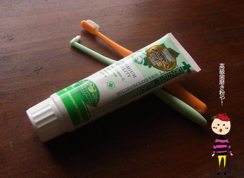 ちょっといい歯磨き粉_d0156336_162472.jpg