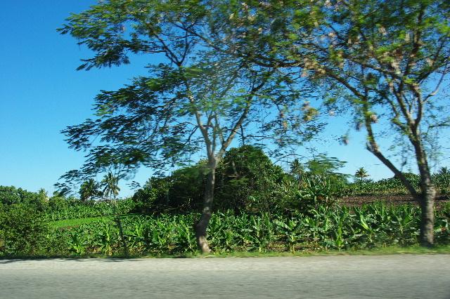 キューバ (56) サンティアゴ・デ・クーバからビランへ_c0011649_7282225.jpg