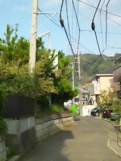 命拾いシマシタ_e0222588_18341988.jpg