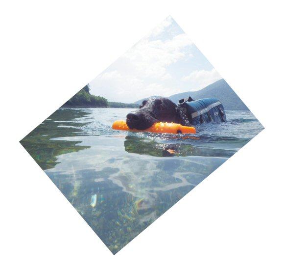 この夏は水泳三昧_c0050400_1853183.jpg