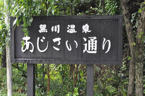 黒川温泉の道案内サイン_a0286510_11422785.jpg