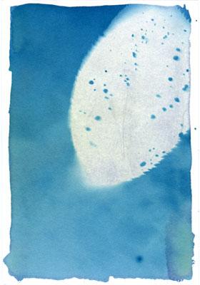 白石ちえこ写真展「いつか見た風景ーペンギン島の日々」にてワークショップに参加_e0117514_19345973.jpg