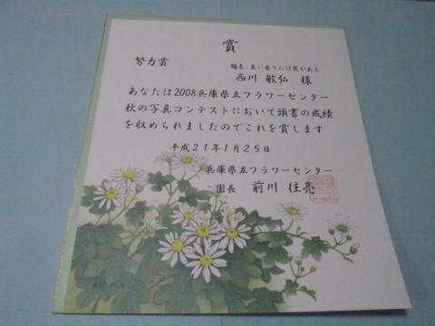 2008年兵庫県立フラワーセンター秋の写真コンテスト 努力賞_a0288226_2319501.jpg