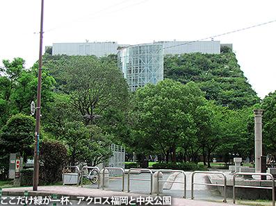博多レポート2 天神近辺_c0167961_15505222.jpg