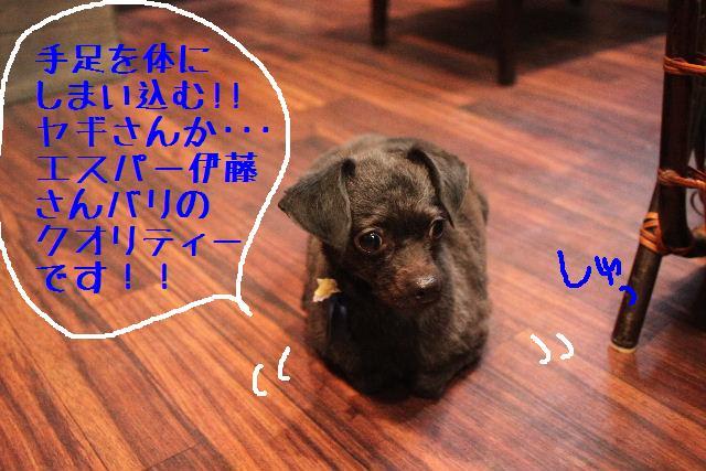 うまいじゃぁ~ん!_b0130018_0161850.jpg