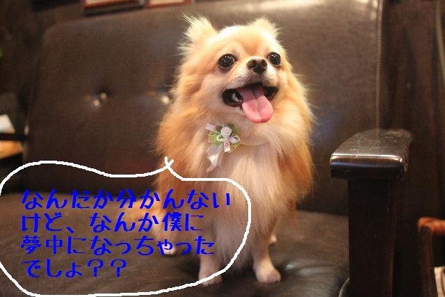 うまいじゃぁ~ん!_b0130018_0205856.jpg