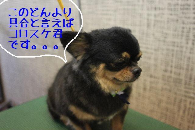 うまいじゃぁ~ん!_b0130018_024405.jpg