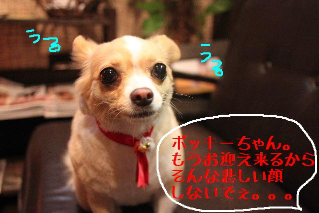 うまいじゃぁ~ん!_b0130018_027166.jpg