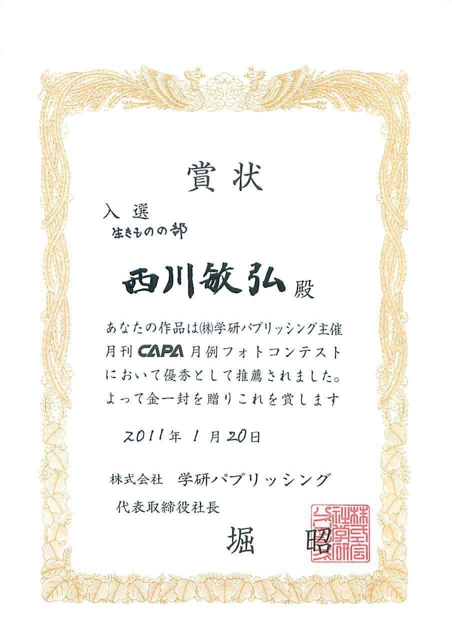 雑誌「CAPA」月例フォトコンテスト 2011年2月号 いきものの部入選_a0288226_929481.jpg