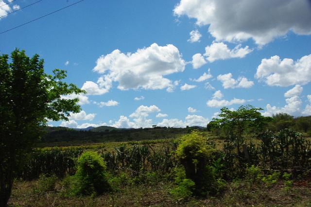 キューバ (58) ビランからサンティアゴ・デ・クーバのモロ要塞へ_c0011649_00940.jpg