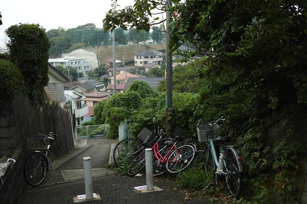 2012/09/10 菊名から綱島まで_b0171364_10102160.jpg
