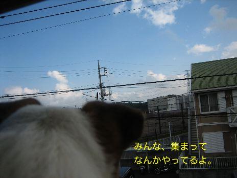 c0179472_953228.jpg