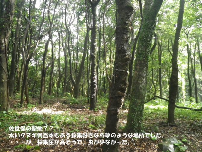 f0183484_12442084.jpg