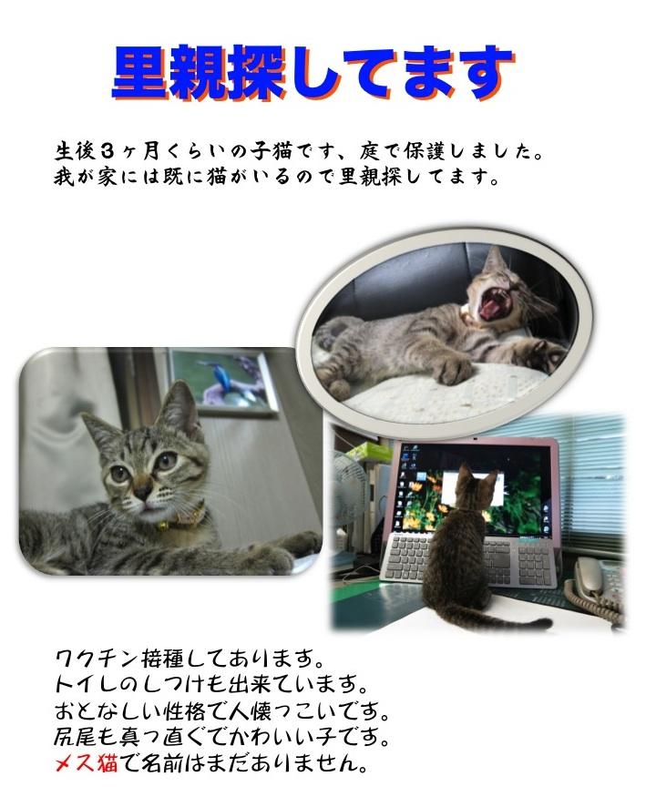 【喰】ナカナカねぇ_f0141609_23114681.jpg