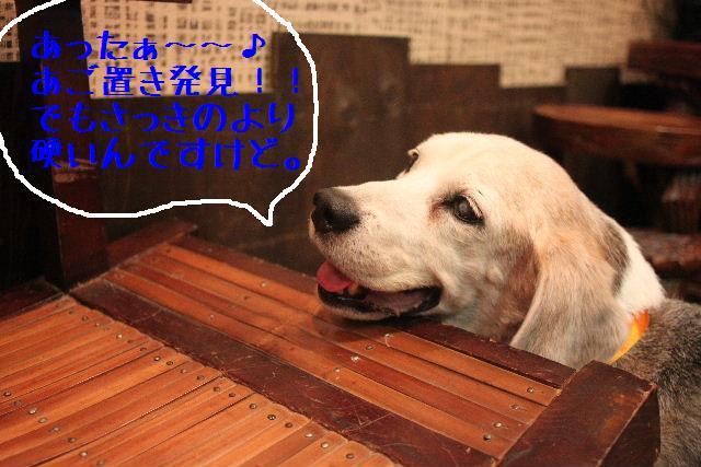 今日と明日はお休みで~す!!_b0130018_8421273.jpg