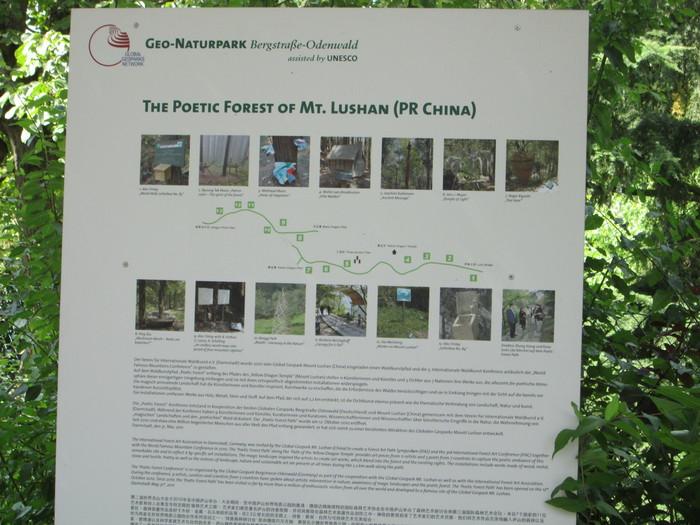 Darmstadt164-8月17日(金)森の展覧会へ_c0100195_18555378.jpg