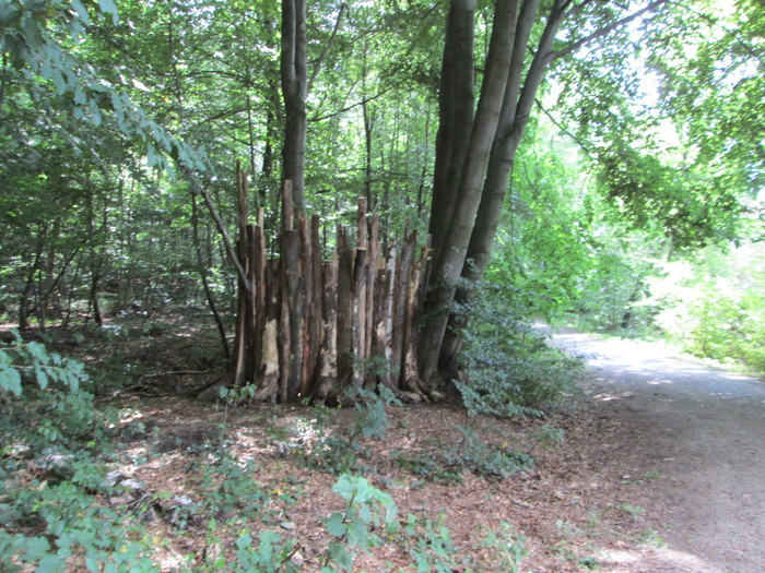 Darmstadt164-8月17日(金)森の展覧会へ_c0100195_18592510.jpg