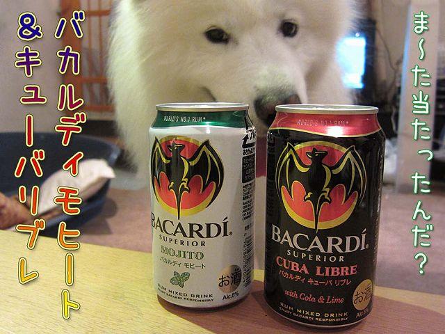 タダ酒2連発!_c0062832_8384515.jpg