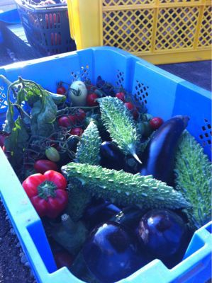 長沼産野菜!_b0232958_17245762.jpg