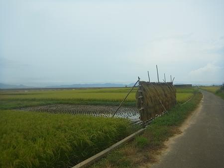 中国地方横断(米子-岡山)_e0201281_5495186.jpg