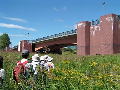 札幌の湿原・モエレ沼_f0078286_1183490.jpg