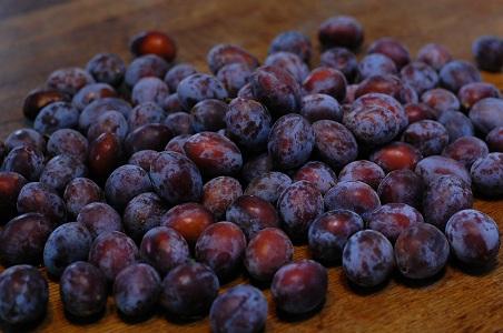 果物が美味しい季節になりました_f0177714_9392881.jpg