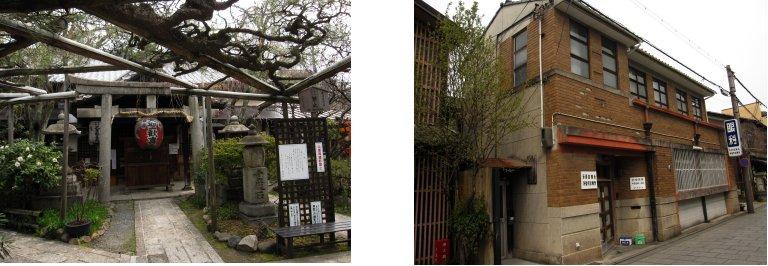 京都観桜編(9):近衛の糸桜(11.4)_c0051620_6154018.jpg