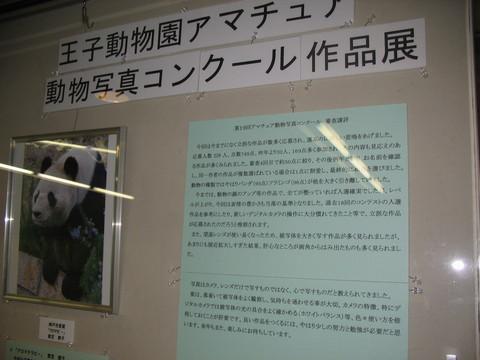 第19回 アマチュア動物写真コンクール 入選 「息継ぎ」_a0288226_0103466.jpg