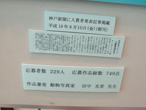 第19回 アマチュア動物写真コンクール 入選 「息継ぎ」_a0288226_06191.jpg