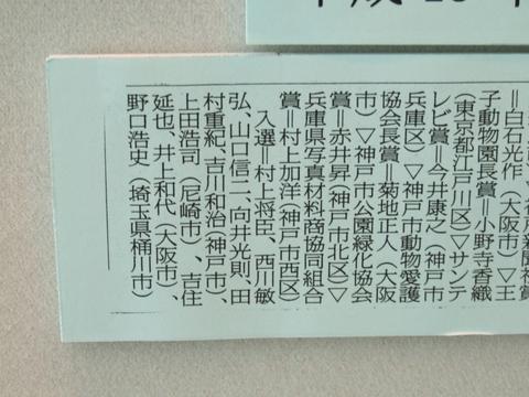 第19回 アマチュア動物写真コンクール 入選 「息継ぎ」_a0288226_0751.jpg