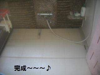 浴室リフォーム4日目_f0031037_21135552.jpg