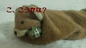 c0052756_1264041.jpg