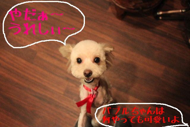 こんばんわぁ~~!!_b0130018_19145891.jpg