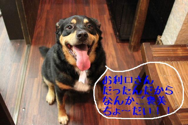 こんばんわぁ~~!!_b0130018_19174875.jpg