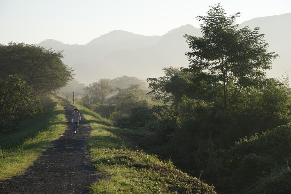 霧の朝_b0074098_21301135.jpg