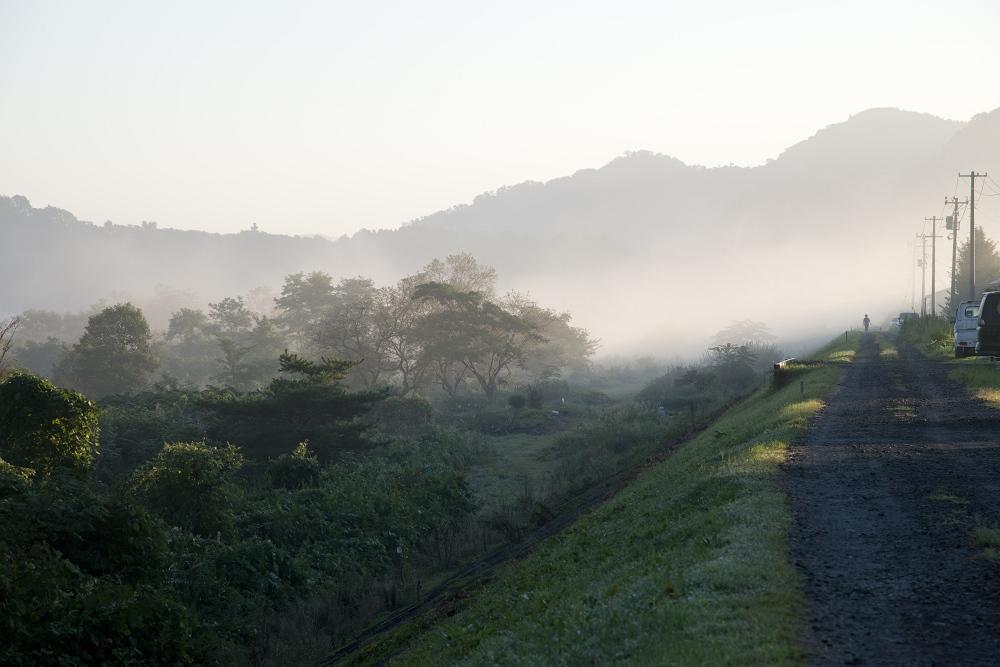 霧の朝_b0074098_219488.jpg