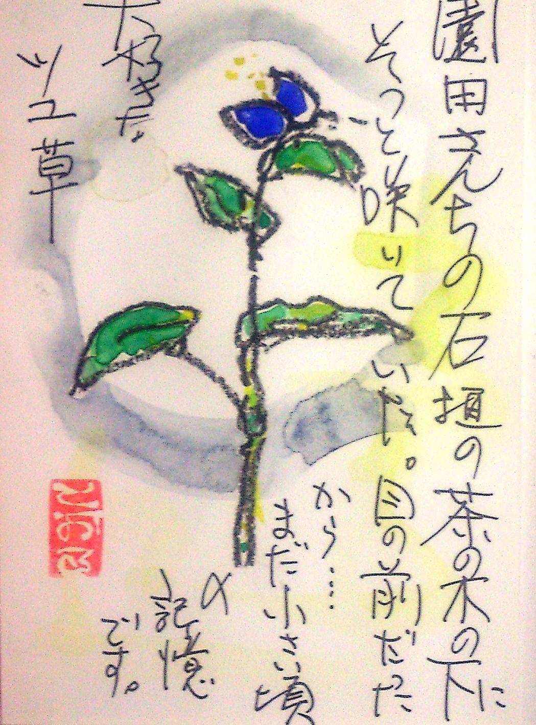 d0053616_148051.jpg