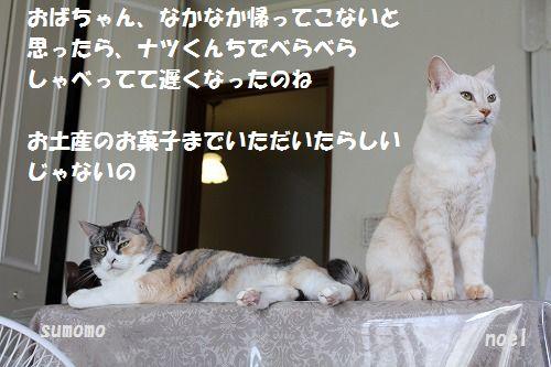 f0063729_17114959.jpg