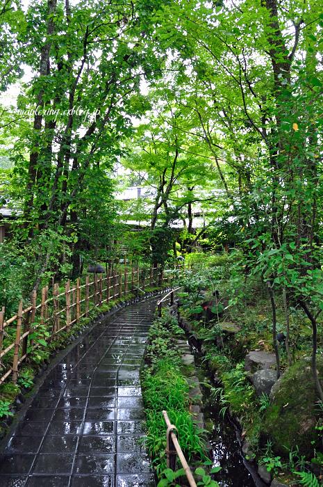湯布院散歩_f0234062_232419.jpg