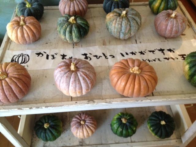 ちどり売店ヨリ=かぼちゃ入荷しました+完売情報_a0251920_20534893.jpg