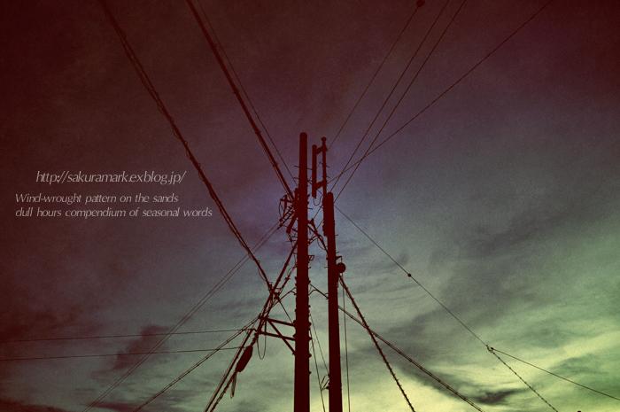 夕闇に並び立つ・・・。_f0235723_18471312.jpg