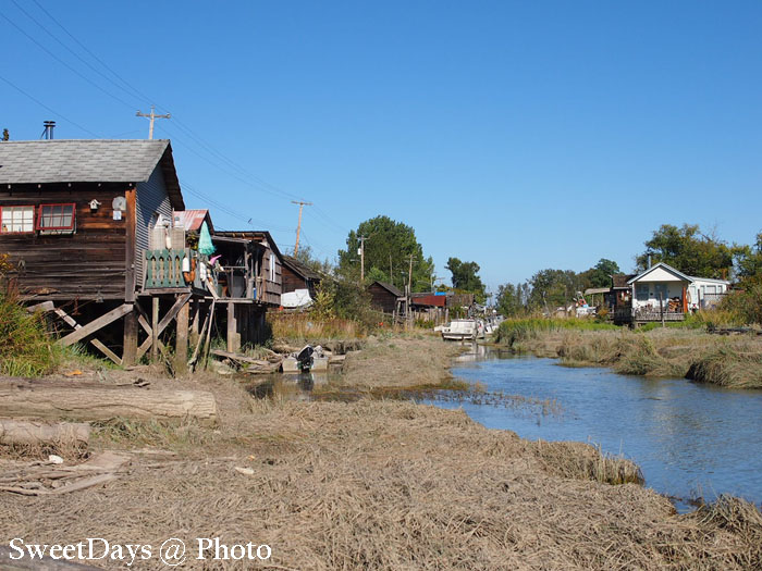 A small village near Steveston_e0046675_71464.jpg